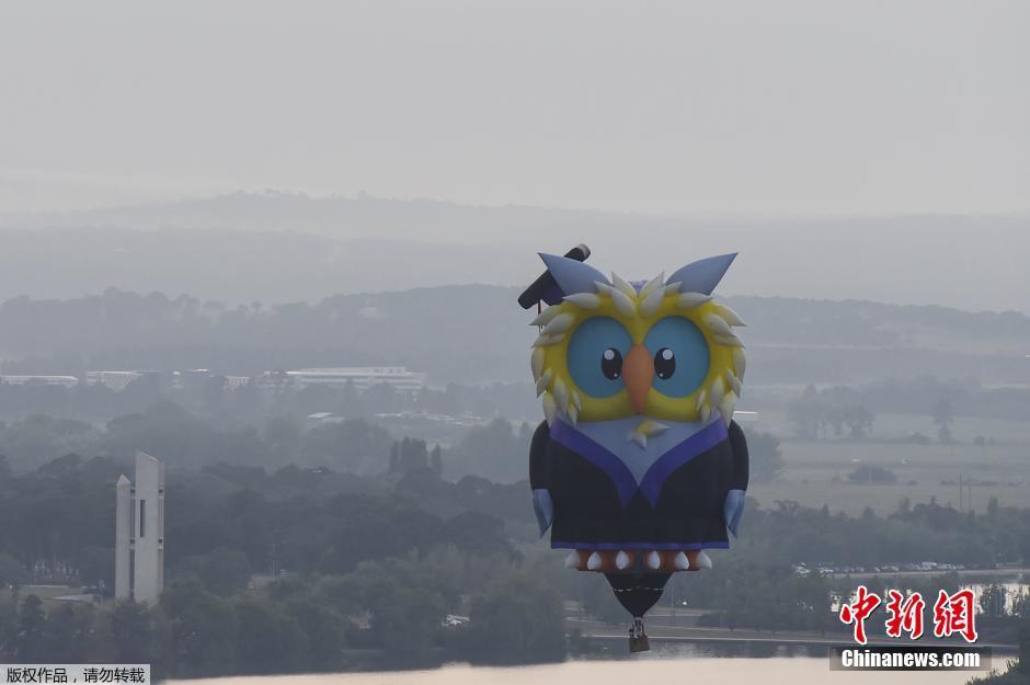 澳大利亚首都举行第三十届热气球节(组图)