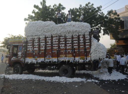关系变紧张 巴基斯坦停止从印度进口棉花等农产品