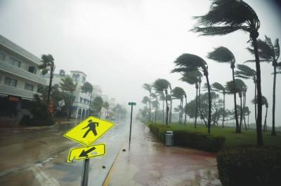 """飓风""""艾尔玛""""登陆美国佛州(图)"""