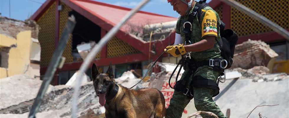 墨西哥8.2级地震搜救